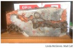 McGinnis-Linda_Mail-Call