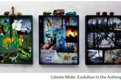 White-Celeste_Evolution-In-The-Anthropocene
